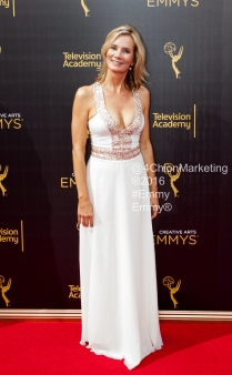 Emmy's Creative Arts 2016 Red Carpet by 4Chion Marketing