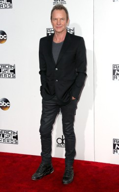 sting-amas-red-carpet-4chion-lifestyle