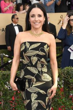 Julia Luuis Dreyfus Salvatore Ferragamo shoes, and Fred Leighton jewels
