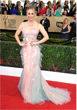 Kaley Cuoco SAG Awards 4Chion LIfestyle